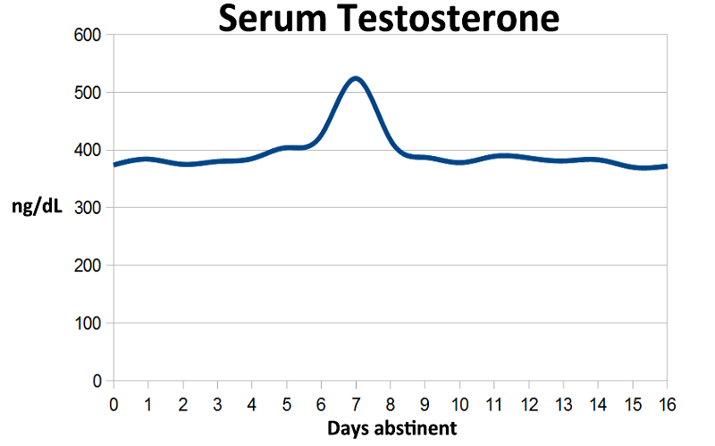 Does NoFap REALLY Increase Testosterone Levels? | PMO Flatline